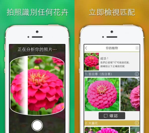 LikeThat 花園 - 花卉鑑定 App